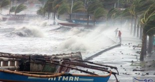 اعصار هارفي