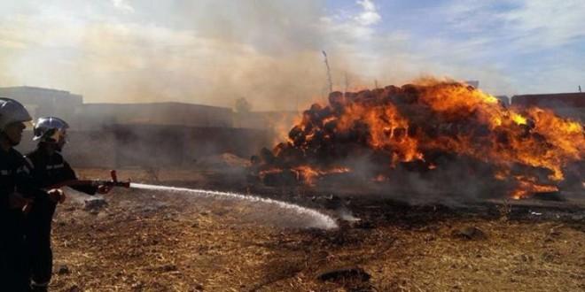 حريق-بلاريجيا
