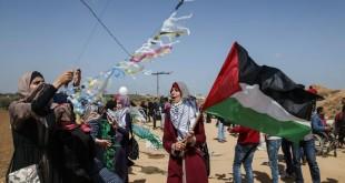العودة-فلسطين