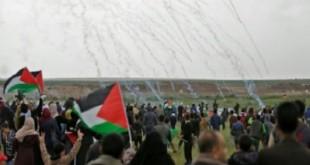 احتجاجات-غزة