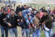 فلسطين-جرحى