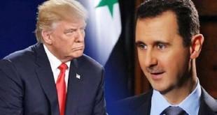 الأسد+ترامب
